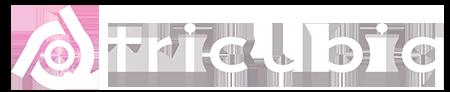 TRICUBIQ | The Software Incubator